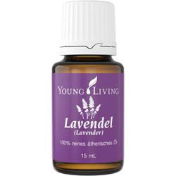 Lavendel (Lavender, Lavendula angustifolia)
